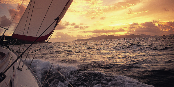 Sail on the wild side